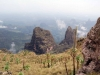 simien-mountains-giant-lobelia