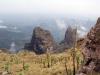 simien-mountains-giant-lobelia